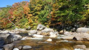 New England Fall Fun Tour