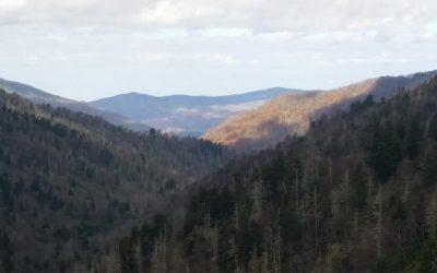 Smoky Mountains Country Fun
